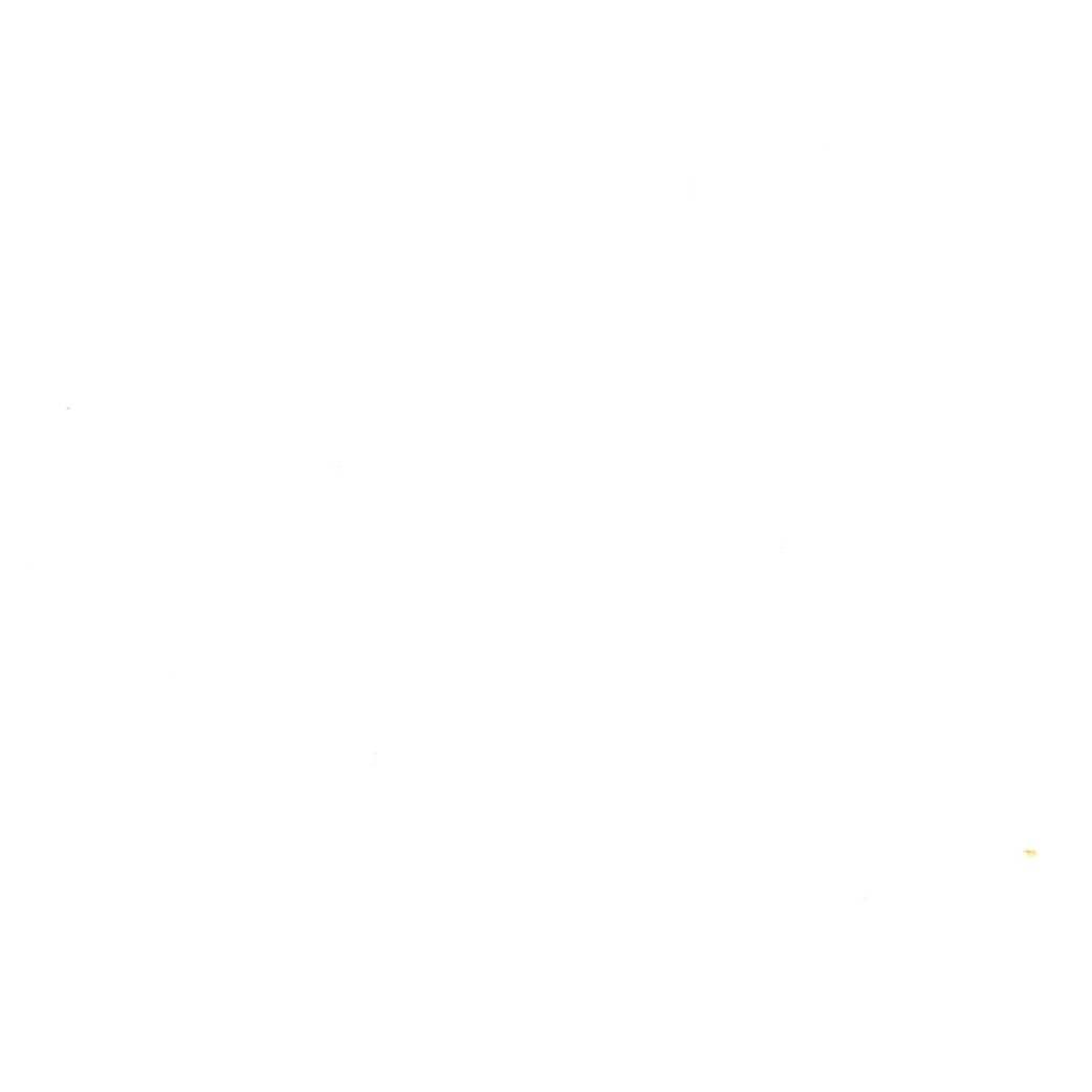 HIRAOKA-104T White