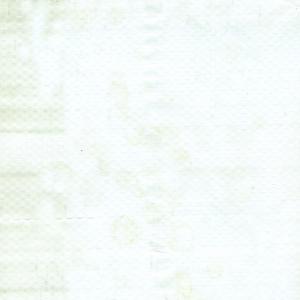 TS 8000 Translucent
